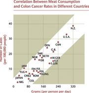 がん発生率と食事の関係
